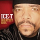 Ice-t Greatest Hits: The Evidence