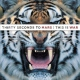 Thirty Seconds To Mars This Is War(2x12+cd