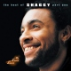 Shaggy Best Of Shaggy Part 1 / Mr.l