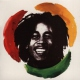 Marley Bob & The Wailers Africa Unite:singles Coll.
