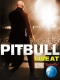 Pitbull Live At Rock In Rio