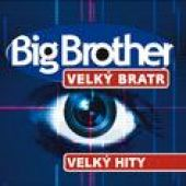 Big Brother Hity (2005)