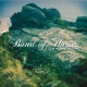 Band Of Horses CD Mirage Rock