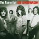 Reo Speedwagon Essential