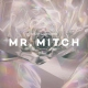 Mr. Mitch Parallet Memories [LP]