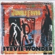 Wonder, Stevie Jungle Fever