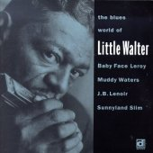 Blues World Of Little Wal