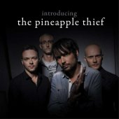 Introducing The Pineapple Thief, 2cd Collection