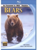 dvd obaly Bears