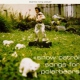 Snow Patrol Songs For Polar Bears