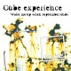 Cube Experience Wake Me Up When September [12in]