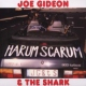 Gideon, Joe & Shark Harum Scarum
