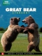 Documentary  /  Bbc Earth DVD Great Bear Stakeout