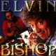 Bishop, Elvin Ace In the Hole