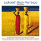 Ladysmith Black Mambazo And Friends