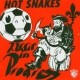 Hot Snakes Audit In Progress