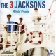Three Jacksons World Cruise