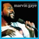 Gaye, Marvin Concert Anthology