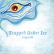 Trapped Under Ice Stay Cold