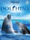 Documentary Dolphins