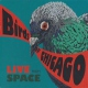 Birds Of Chicago Live From Space