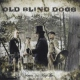 Old Blind Dogs Wherever Yet May Be