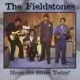 Fieldstones Memphis Blues Today