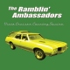 Ramblin´ Ambassadors Vista Cruiser Country Squ