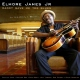 James, Elmore -jr- Daddy Gave Me the Blues