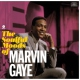 Gaye, Marvin Soulful Moods of.. -Hq- [LP]