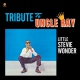 Wonder, Stevie Tribute To Uncle Ray -Hq- [LP]