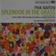 Pink Martini Splendor In the.. -Digi-