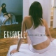 Endwell Homeland Insecurity
