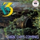 Three Dark Days Coming [LP]