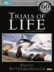 Documentary / Bbc Trials of Life