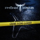 Phoenix Rising Crime Scene Cleaner