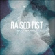 Raised Fist Veil of Ignorance