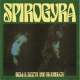 Spirogyra Bells, Boots and Shambles