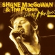 Macgowan, Shane & Popes Live At.. -Cd+Dvd-
