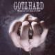 Gotthard Need To Believe