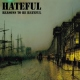 Hateful Reasons To Be.. -Ltd- [LP]