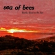 Sea Of Bees Build a Boat To the Sun
