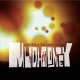 Mudhoney Under a Billion Suns [LP]