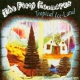 Fiery Furnaces Tropical Ice-Land -2tr-