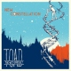 Toad The Wet Sprocket New Constellation