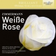 Zimmermann, U. Weisse Rose