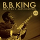 King, B.b. Best of-Blues Collection
