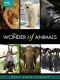 Documentary  /  Bbc Earth DVD Wonders Of Animals