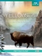 Documentary / Bbc Yellowstone