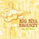 Broonzy, Big Bill Big Bill Blues